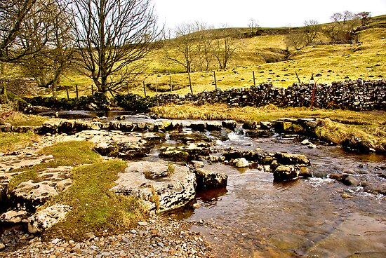 Cray Gill Stepping Stones by Trevor Kersley