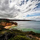 Point Addis Coastline by John  Kowalski