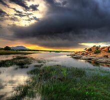 Willow Lake Wide by Bob Larson