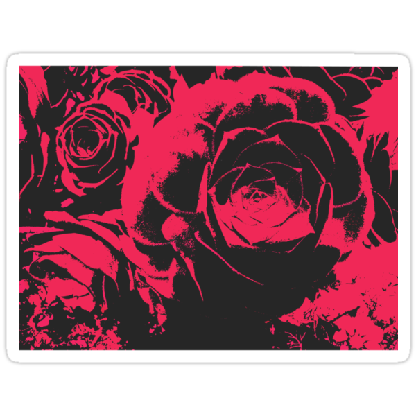 Coming up Roses by lottietc
