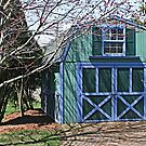 Pennsylvania Barn by Monnie Ryan