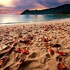 sunset by claudio galvan