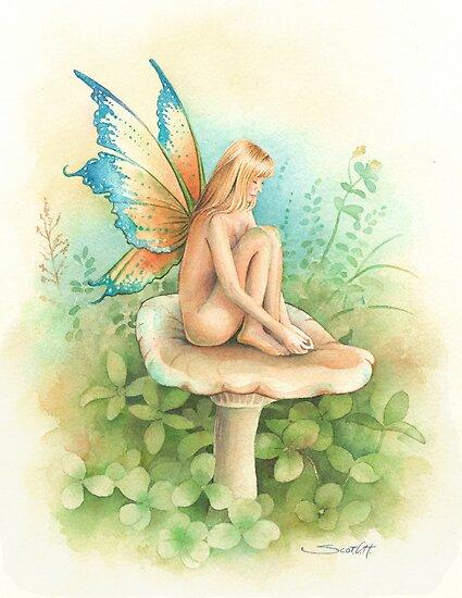 Mushroom Fairy by Scot Howden