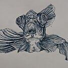 Googly Fish! by MegJay