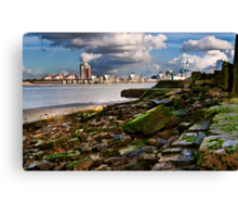 the barriers Canvas Print