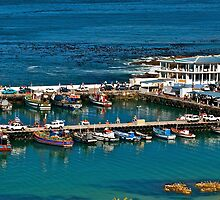 Boats in Kalk Bay harbour, South Africa by davridan