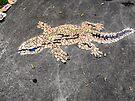 Gecko Mosaic by Matthew Sims