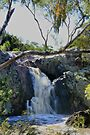 Koorawatha Waterfall by julie anne  grattan