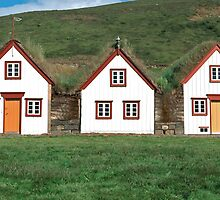 Old historic houses, Iceland by leksele