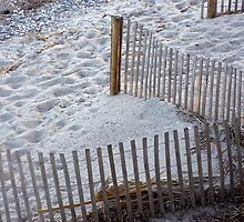 Beach Fence, Edisto Is. 10/09 by jenmuse