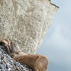 Birling Gap Cliffs by Puddlejumper9