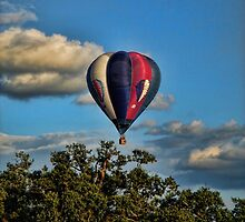 Up Up and Away by Alex Hardie