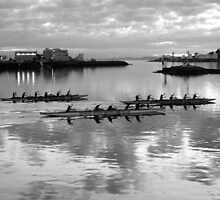 Harbour Paddlers by JD McKenna