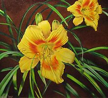 Yellow Daylily by lanadi