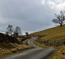 Hill Road by Trevor Kersley