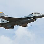 F-16 Fighting Falcon by mikeforsberg