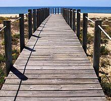 The Boardwalk by Paulo Ferreira