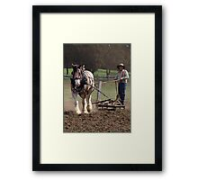"""""""Blue"""" working at Churchill Island on Easter Sunday 2010 Framed Print"""