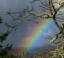 Valley Rainbow by bicyclegirl