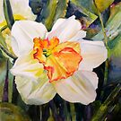 Easter Daffodil by Kay Smith