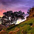 Sunset over Topanga Canyon, CA by LudaNayvelt
