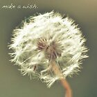 make a wish. by batakbeatrix