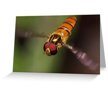 Hoverfly in flight Greeting Card