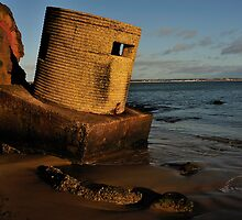 Studland - Pillbox by delros