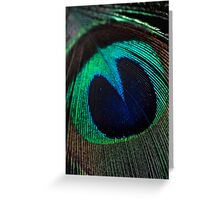 Just a feather. Greeting Card