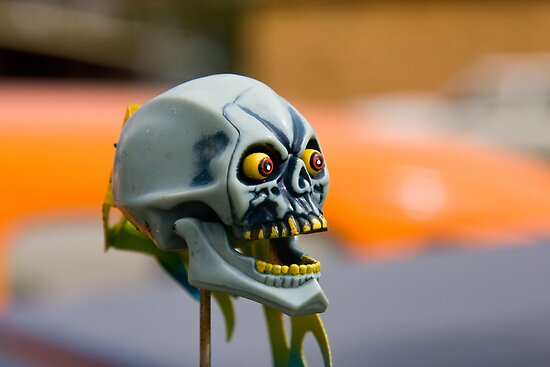 Achmed by Jason Adams