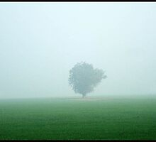 FOG by shararat