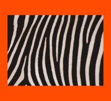 T Shirt Zebra Pattern Kids Clothes