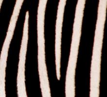 T Shirt Zebra Pattern Sticker