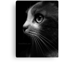 Catch Her Stealing. Canvas Print