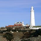 St Mary's Lighthouse Northumberland by Moonlake