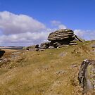 Dartmoor: Cathanger Rock by Rob Parsons