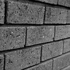 Brick Wall by Sarah Howarth [ Photography ]