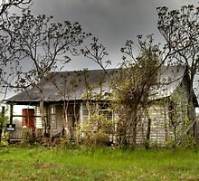 Deserted Farmhouse by Terence Russell
