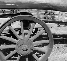 Wooden Wheels by Melissa Park
