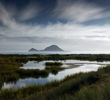 Whale Island by Michael Treloar