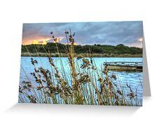 Anglesea, Victoria Greeting Card