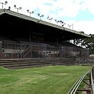 North Melbourne Football Ground,Arden street,NorthMelbourne by Rosina  Lamberti