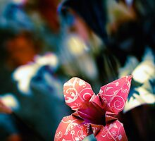...paper flowers... by Geoffrey Dunn