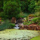 Nerima Japanese Gardens by Mike Doran