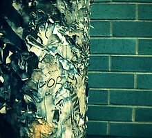 Burned Fliers and a Brick Wall by 4Hour