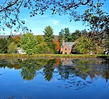 Landscape Reflection Berkshires by Randy Mendelsohn