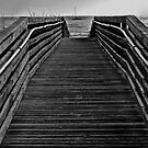 Walk the Plank by Jeff Clark