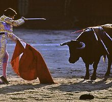 Bullfighting−9、SPAIN by yoshiaki nagashima