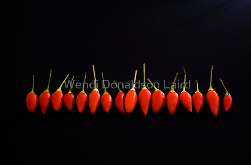 Little Red Things All in a Row by Wendi Donaldson