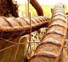 Steel Snakes by SpiralPrints